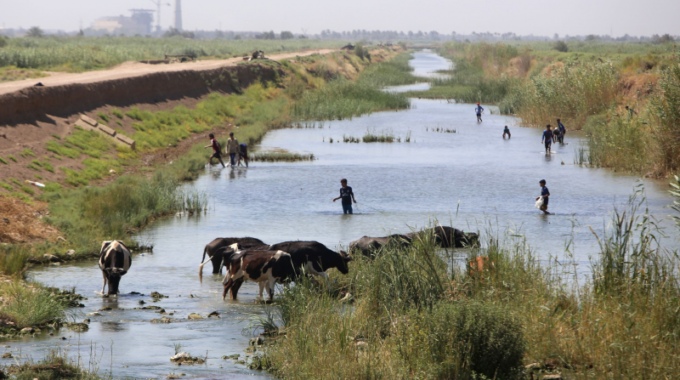جفاف قاس يهدد الزراعة وكل مفاصل الحياة جنوب العراق